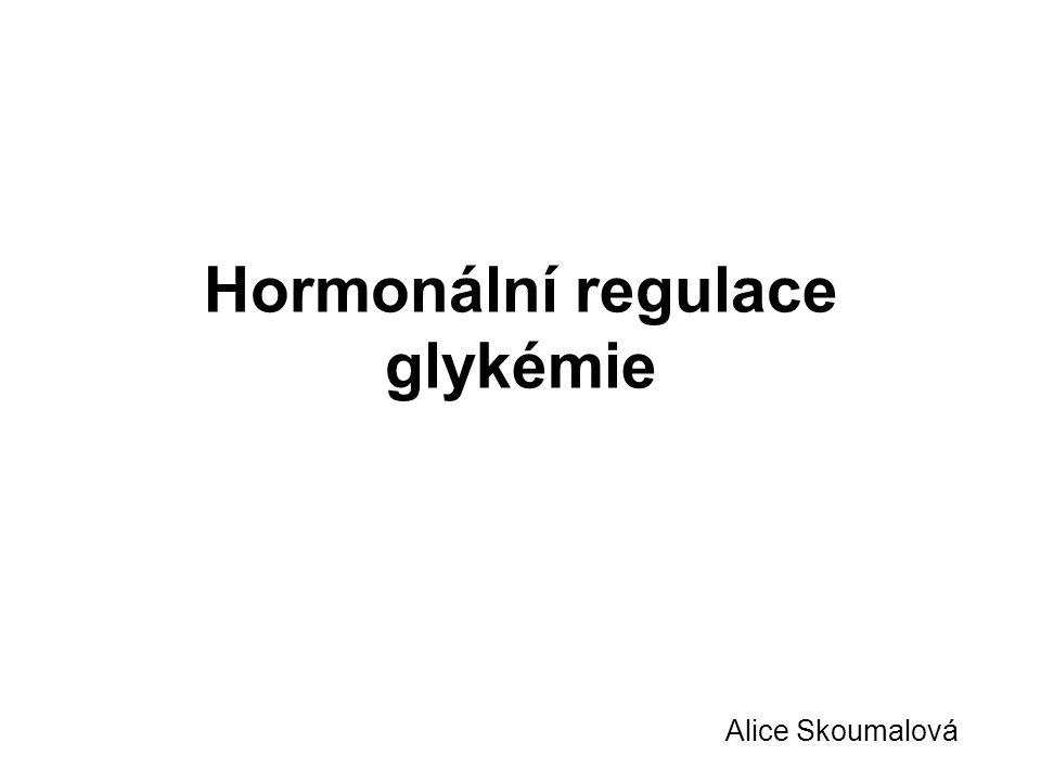 Hormonální regulace glykémie