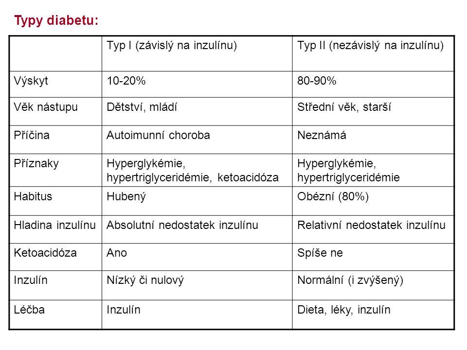 Typy diabetu: Typ I (závislý na inzulínu)