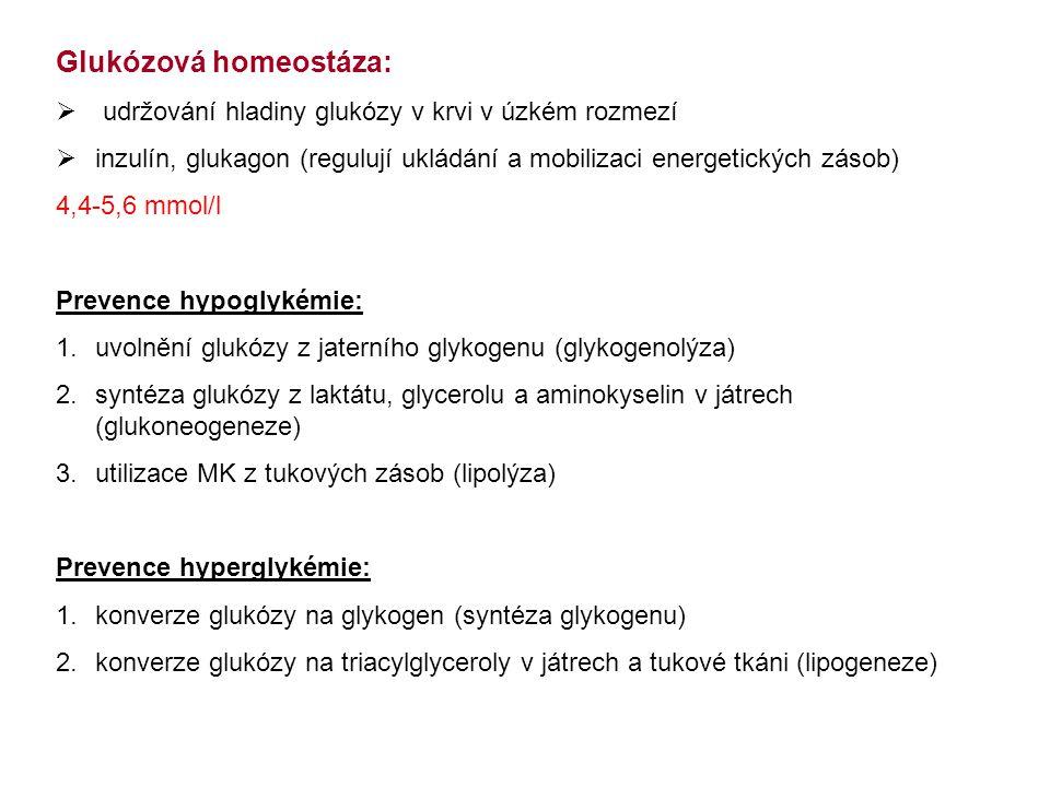 Glukózová homeostáza: