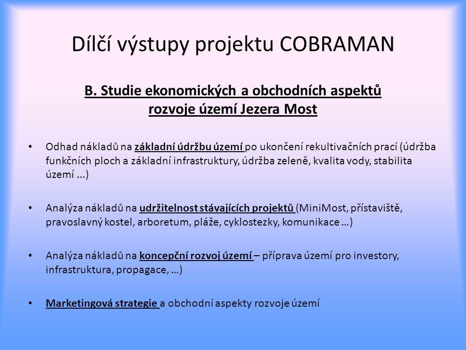 Dílčí výstupy projektu COBRAMAN