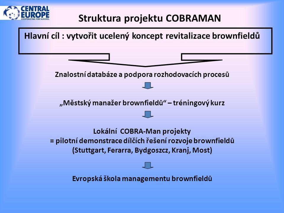 Struktura projektu COBRAMAN