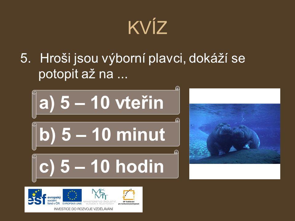 KVÍZ a) 5 – 10 vteřin b) 5 – 10 minut c) 5 – 10 hodin