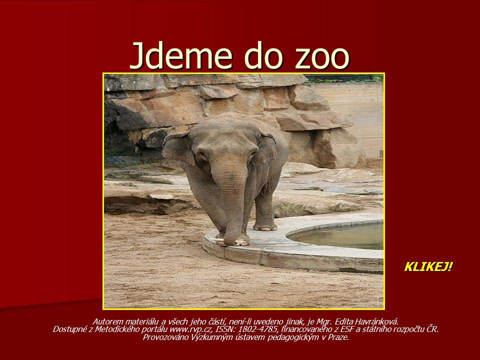 Jdeme do zoo KLIKEJ! Autorem materiálu a všech jeho částí, není-li uvedeno jinak, je Mgr. Edita Havránková.