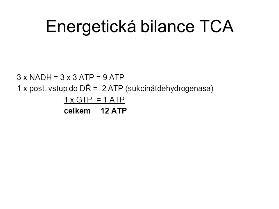 Energetická bilance TCA