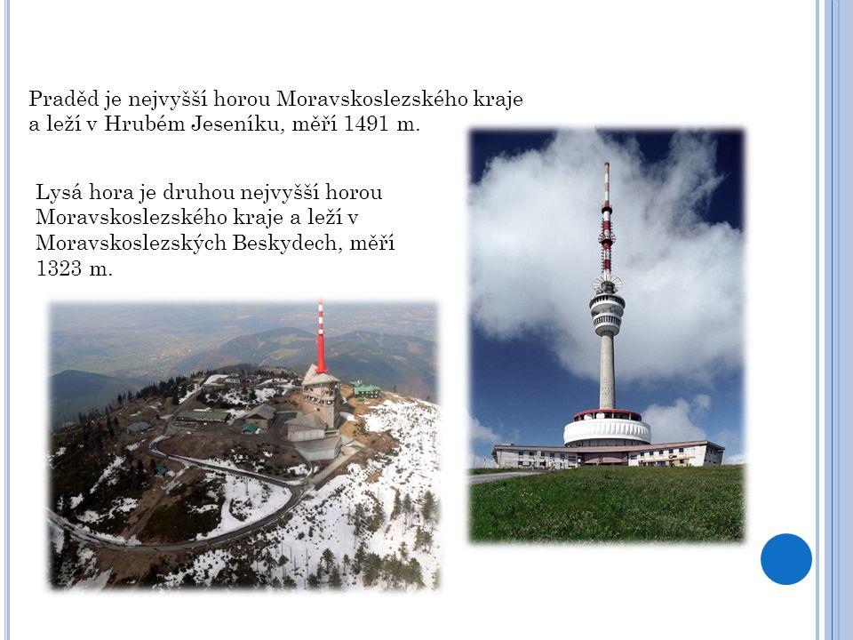 Praděd je nejvyšší horou Moravskoslezského kraje a leží v Hrubém Jeseníku, měří 1491 m.