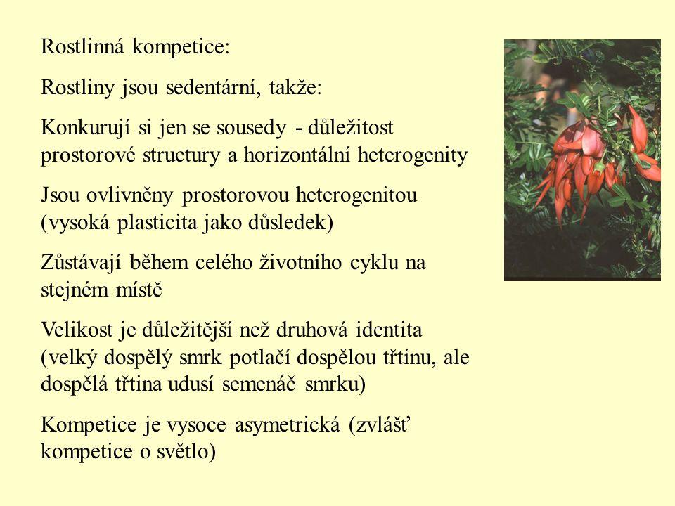 Rostlinná kompetice: Rostliny jsou sedentární, takže: Konkurují si jen se sousedy - důležitost prostorové structury a horizontální heterogenity.