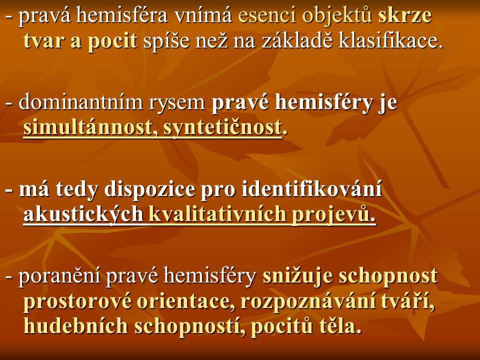 - pravá hemisféra vnímá esenci objektů skrze tvar a pocit spíše než na základě klasifikace.