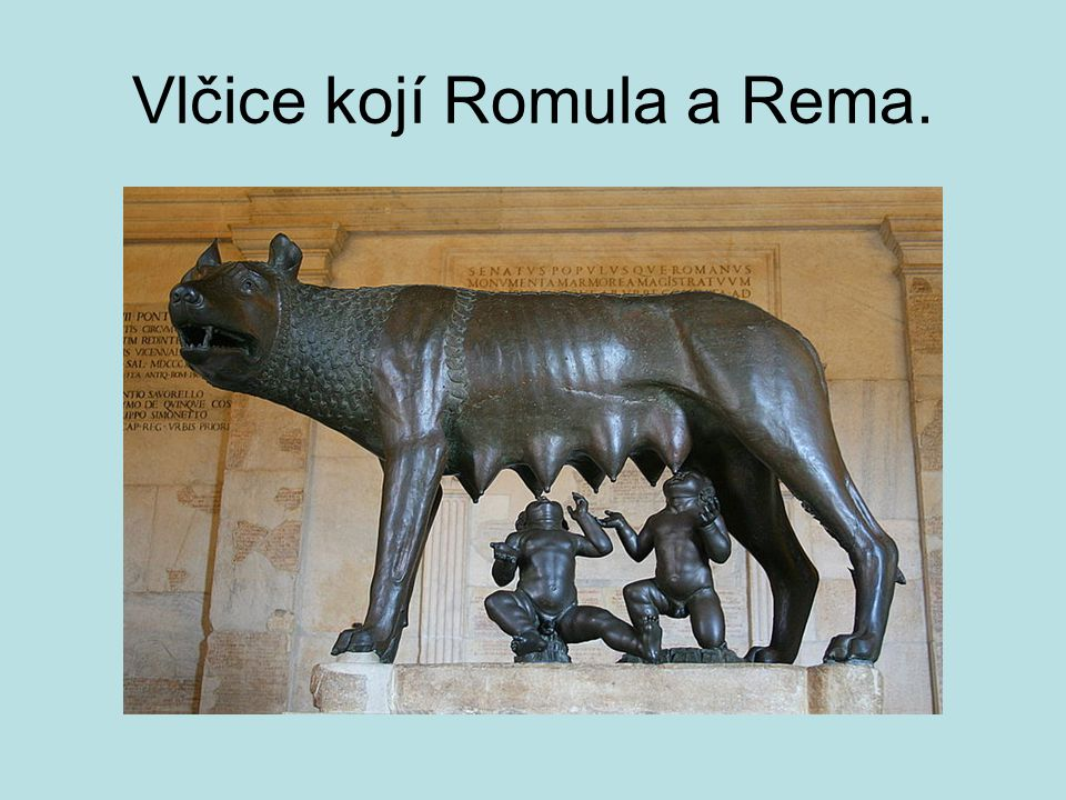 Vlčice kojí Romula a Rema.
