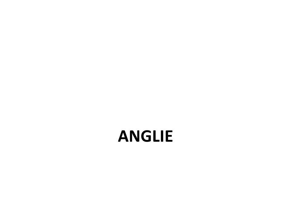 ANGLIE 7