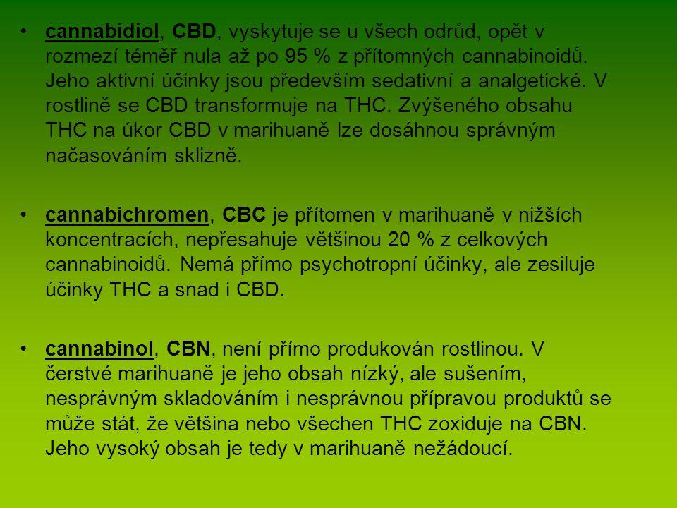 cannabidiol, CBD, vyskytuje se u všech odrůd, opět v rozmezí téměř nula až po 95 % z přítomných cannabinoidů. Jeho aktivní účinky jsou především sedativní a analgetické. V rostlině se CBD transformuje na THC. Zvýšeného obsahu THC na úkor CBD v marihuaně lze dosáhnou správným načasováním sklizně.