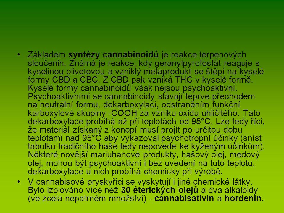 Základem syntézy cannabinoidů je reakce terpenových sloučenin