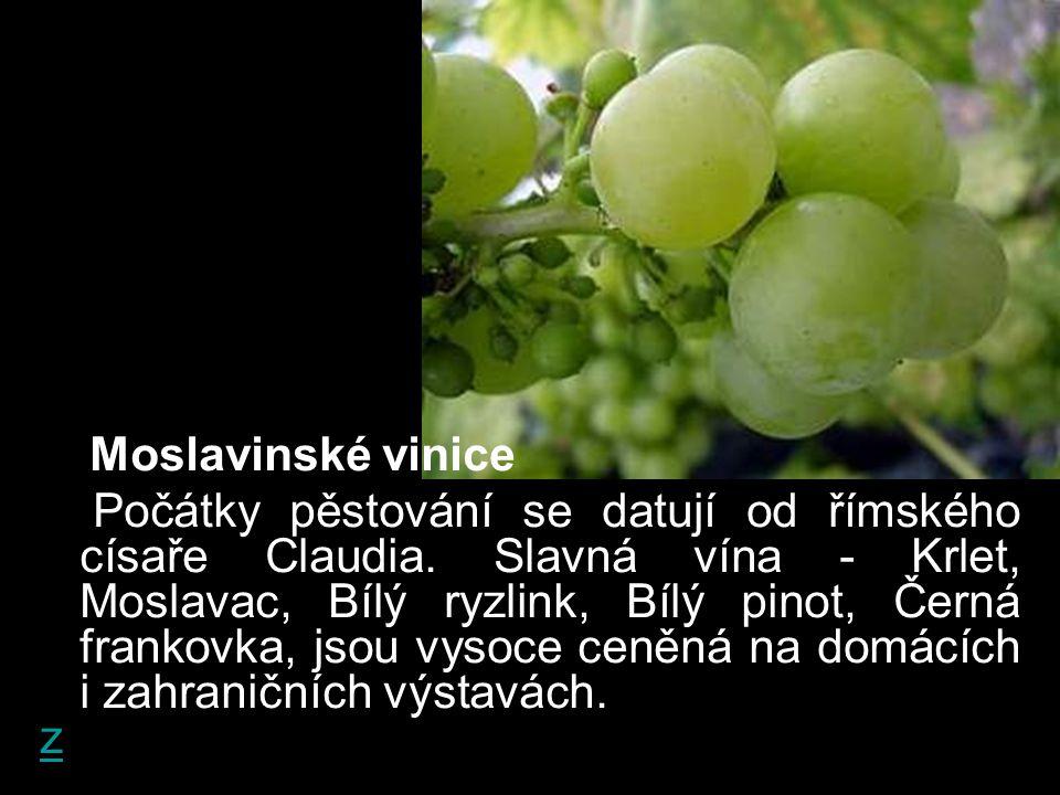 Moslavinské vinice