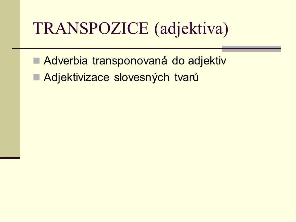 TRANSPOZICE (adjektiva)