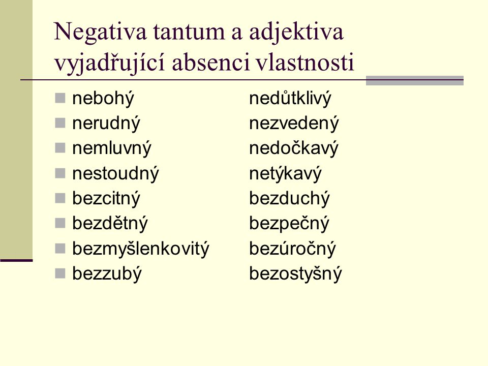 Negativa tantum a adjektiva vyjadřující absenci vlastnosti