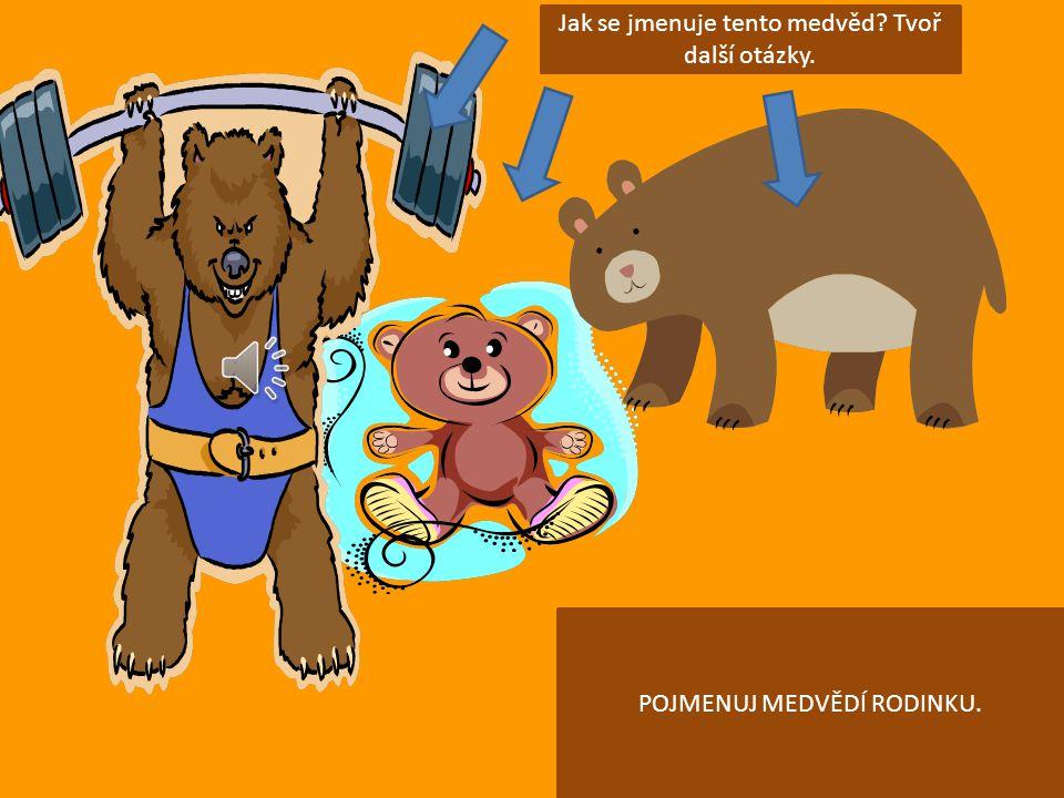 Jak se jmenuje tento medvěd Tvoř další otázky.
