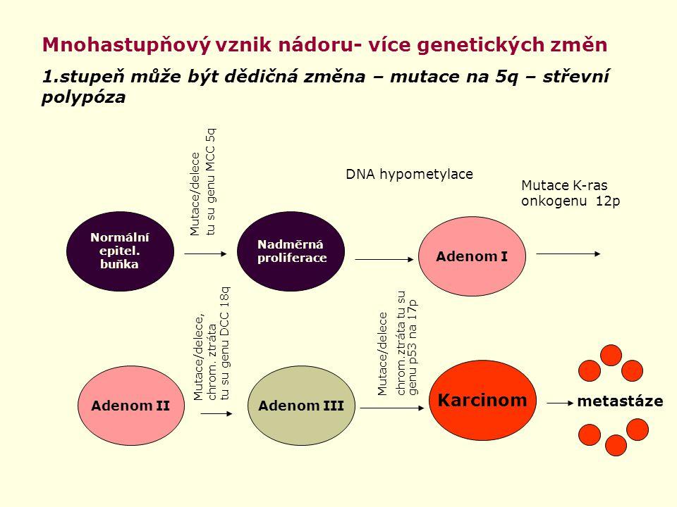 Mnohastupňový vznik nádoru- více genetických změn