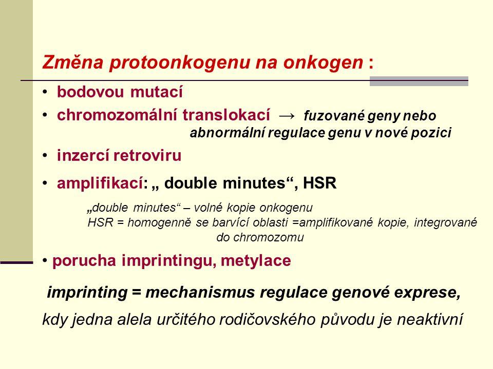Změna protoonkogenu na onkogen :