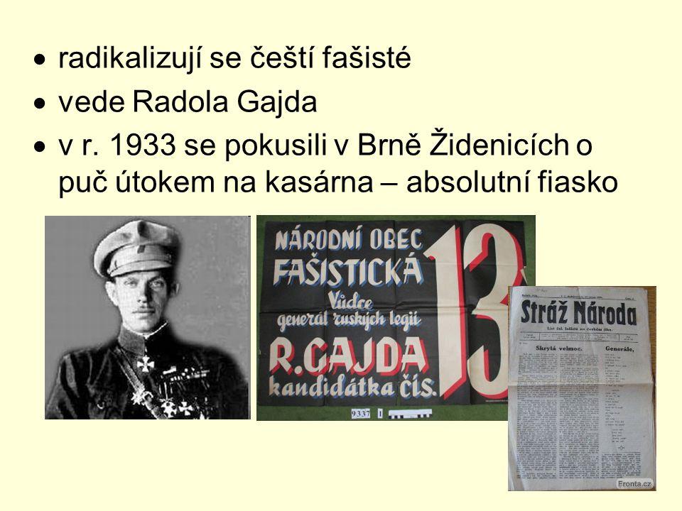 radikalizují se čeští fašisté