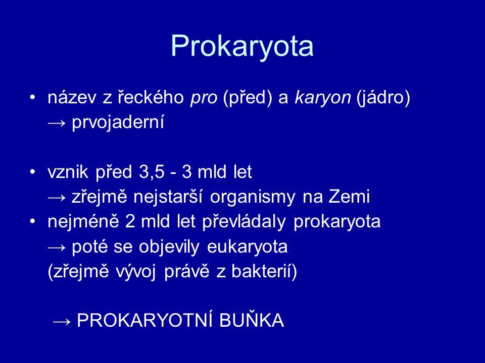 Prokaryota název z řeckého pro (před) a karyon (jádro) → prvojaderní