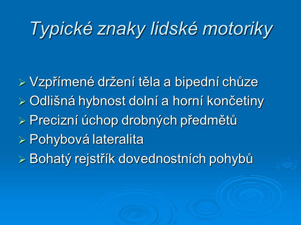 Typické znaky lidské motoriky