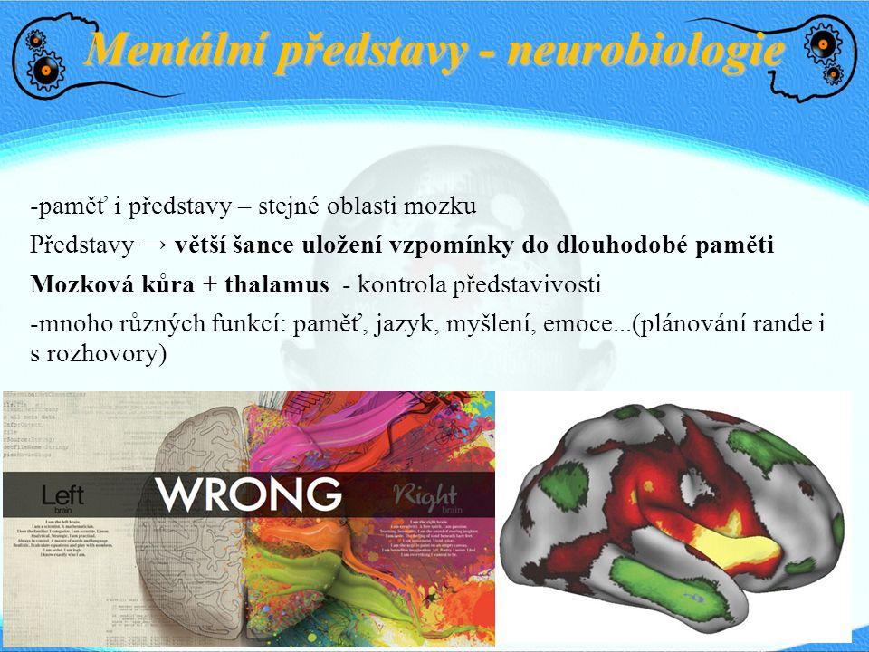 Mentální představy - neurobiologie