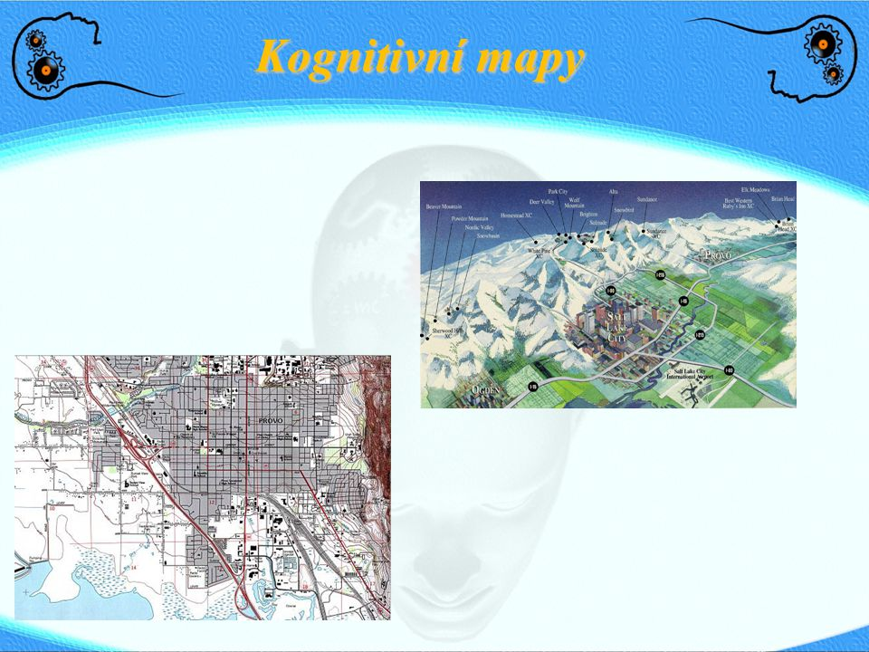Kognitivní mapy
