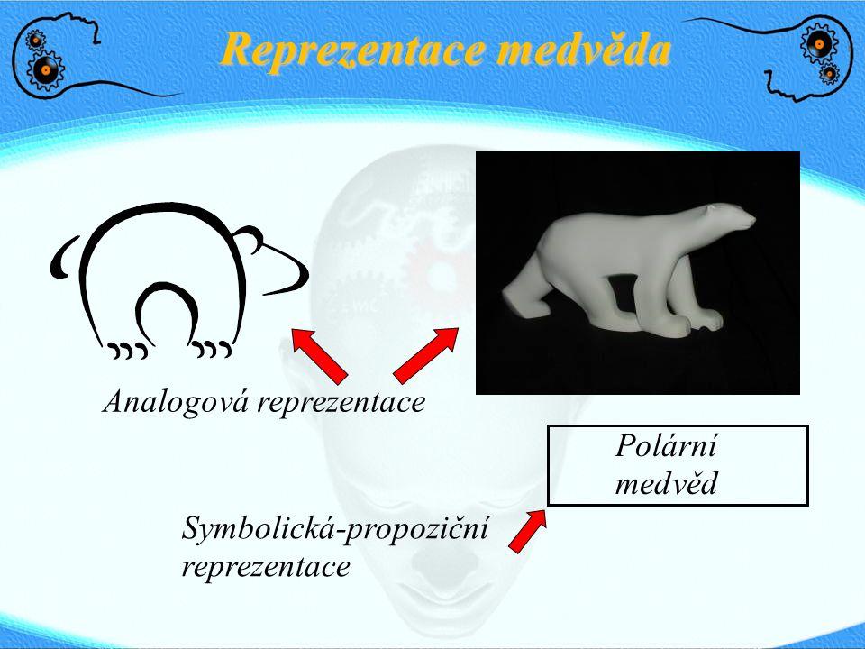 Reprezentace medvěda Analogová reprezentace Polární medvěd