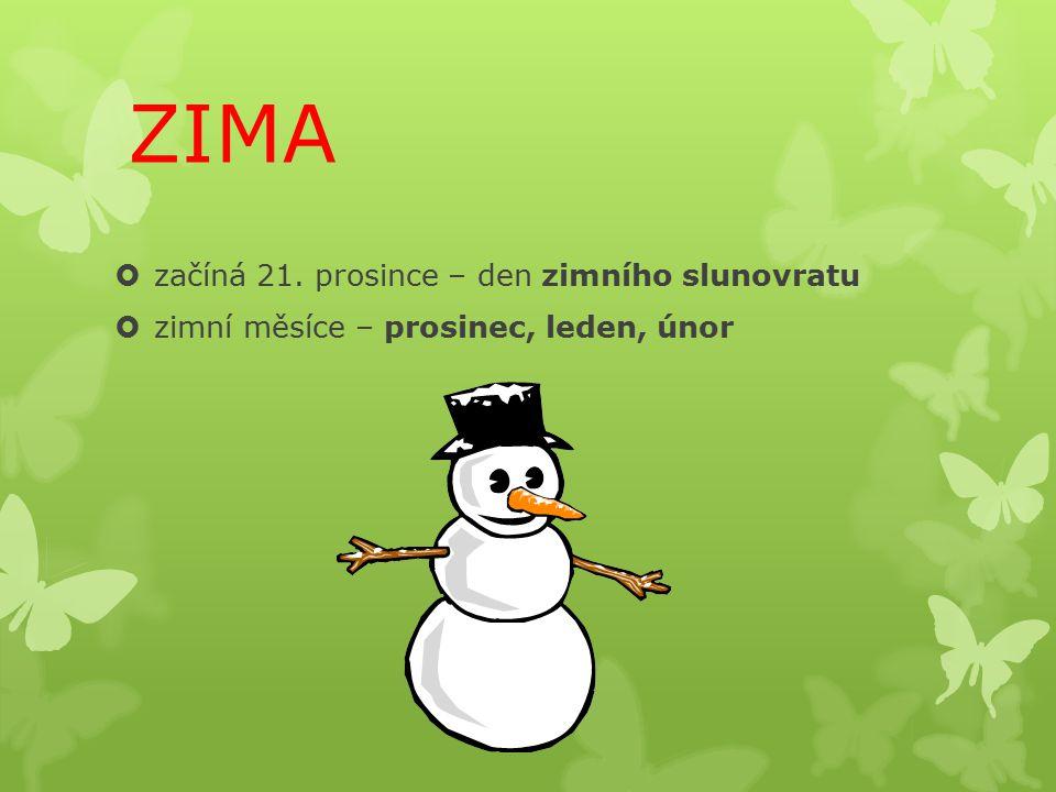 ZIMA začíná 21. prosince – den zimního slunovratu