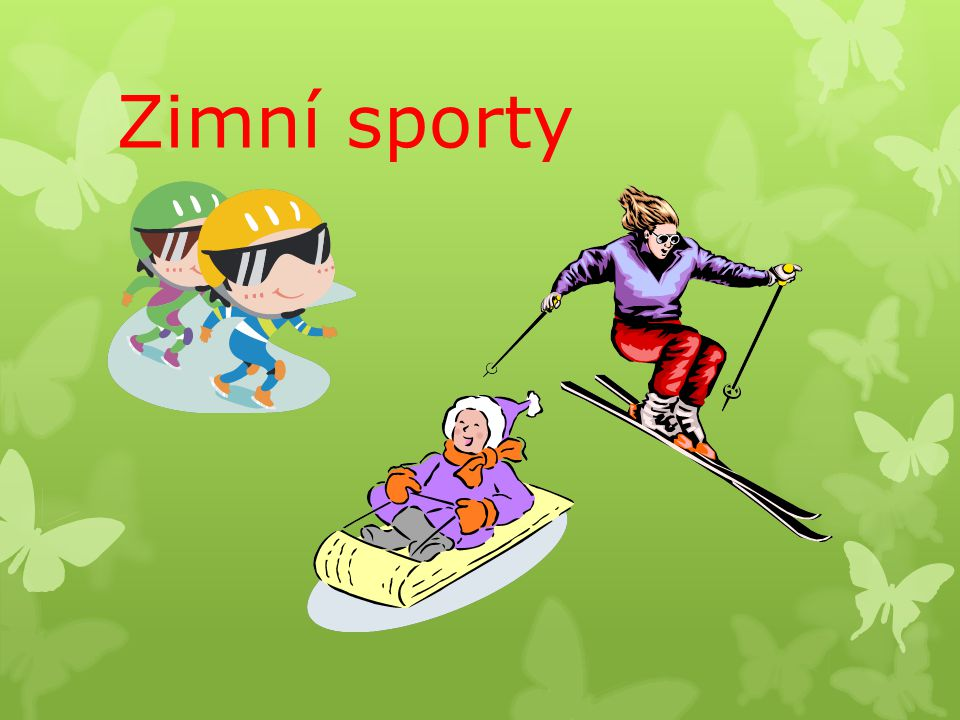 Zimní sporty