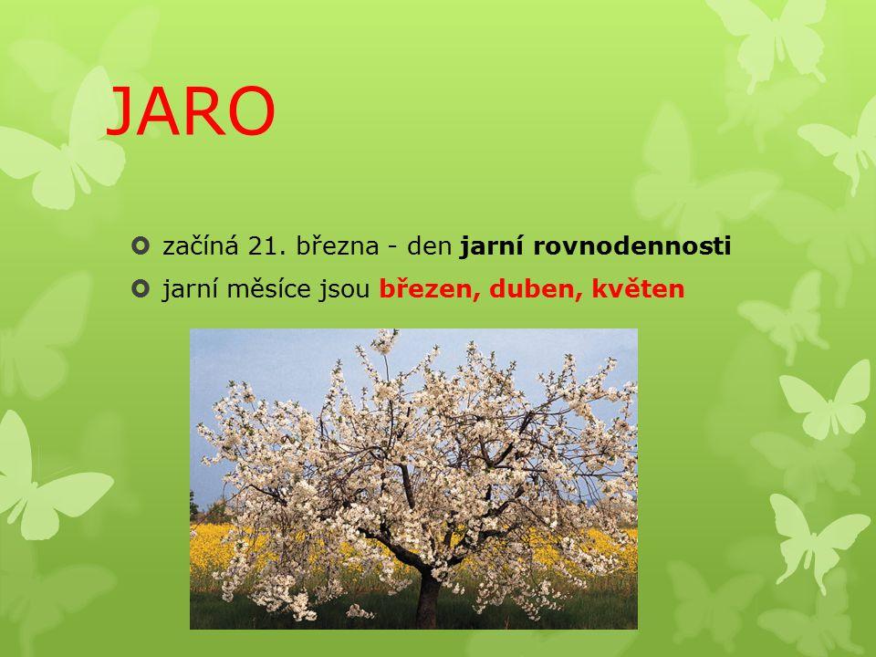 JARO začíná 21. března - den jarní rovnodennosti