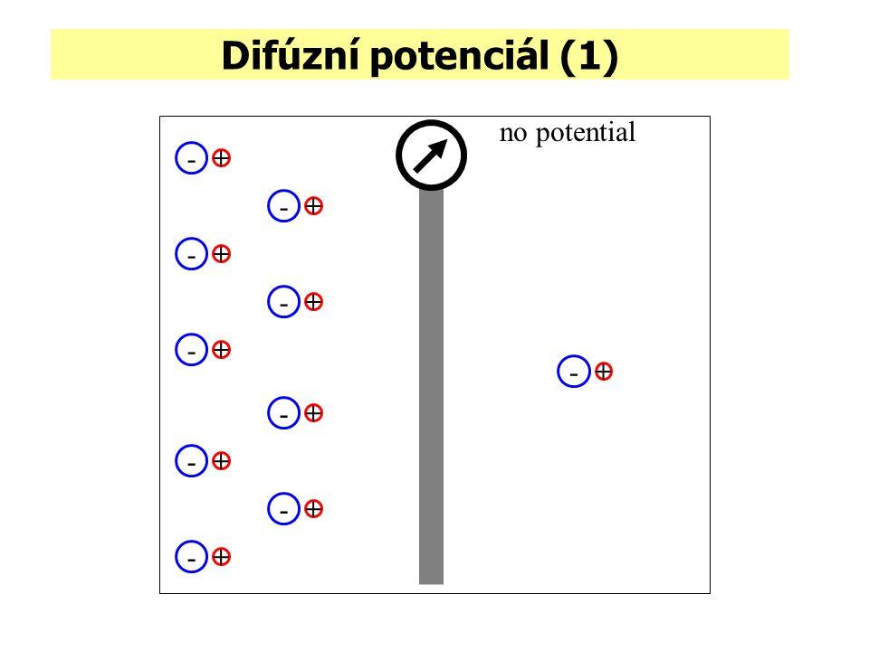 Difúzní potenciál (1) no potential - + - +