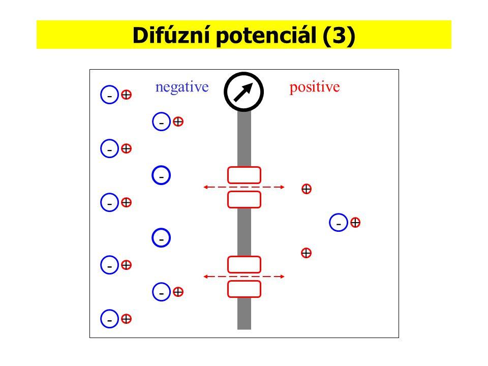 Difúzní potenciál (3) negative positive - + - + - + - + - + - + - + -