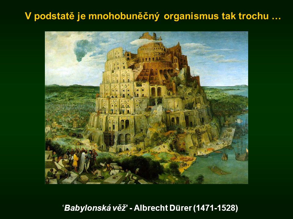 'Babylonská věž' - Albrecht Dürer (1471-1528)