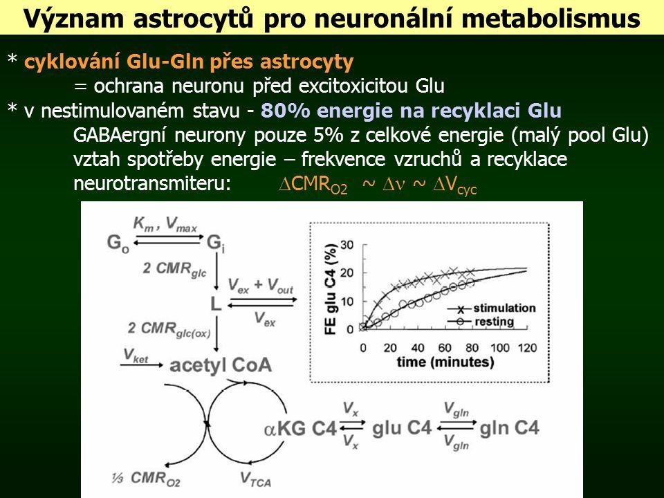 Význam astrocytů pro neuronální metabolismus