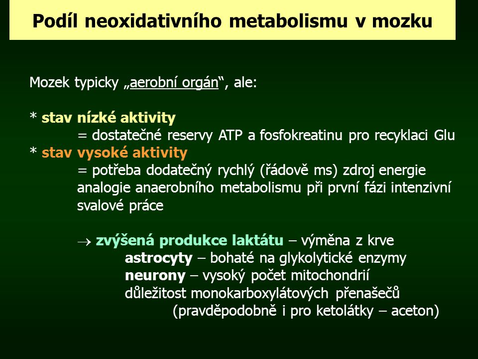 Podíl neoxidativního metabolismu v mozku