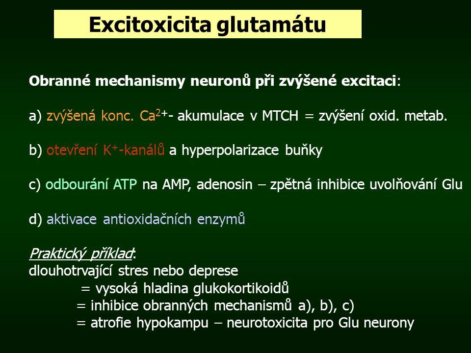 Excitoxicita glutamátu