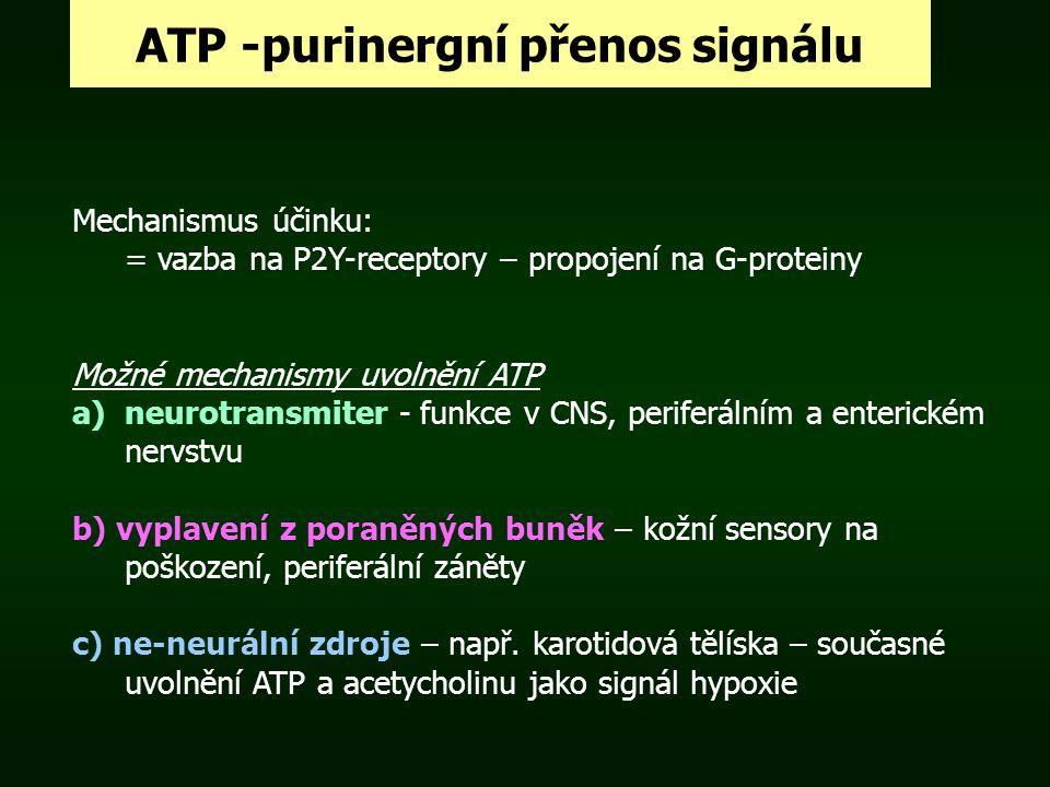 ATP -purinergní přenos signálu