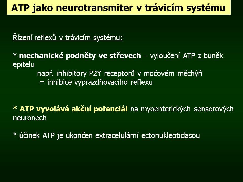 ATP jako neurotransmiter v trávicím systému