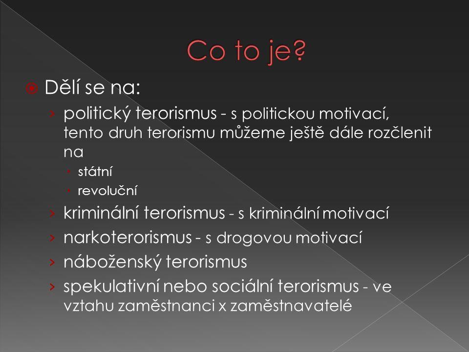 Co to je Dělí se na: politický terorismus - s politickou motivací, tento druh terorismu můžeme ještě dále rozčlenit na.