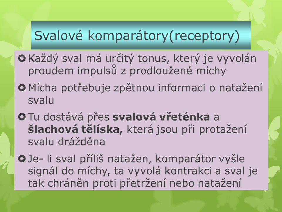 Svalové komparátory(receptory)