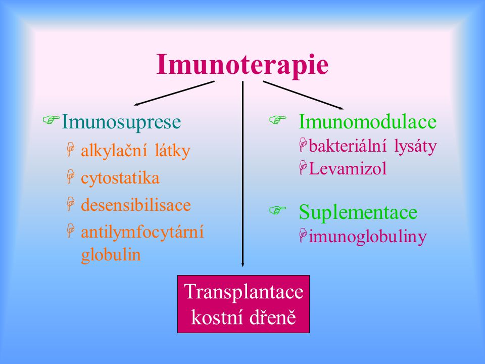 Imunoterapie Imunosuprese Imunomodulace Suplementace Transplantace