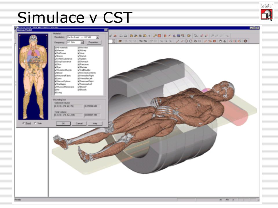 Simulace v CST