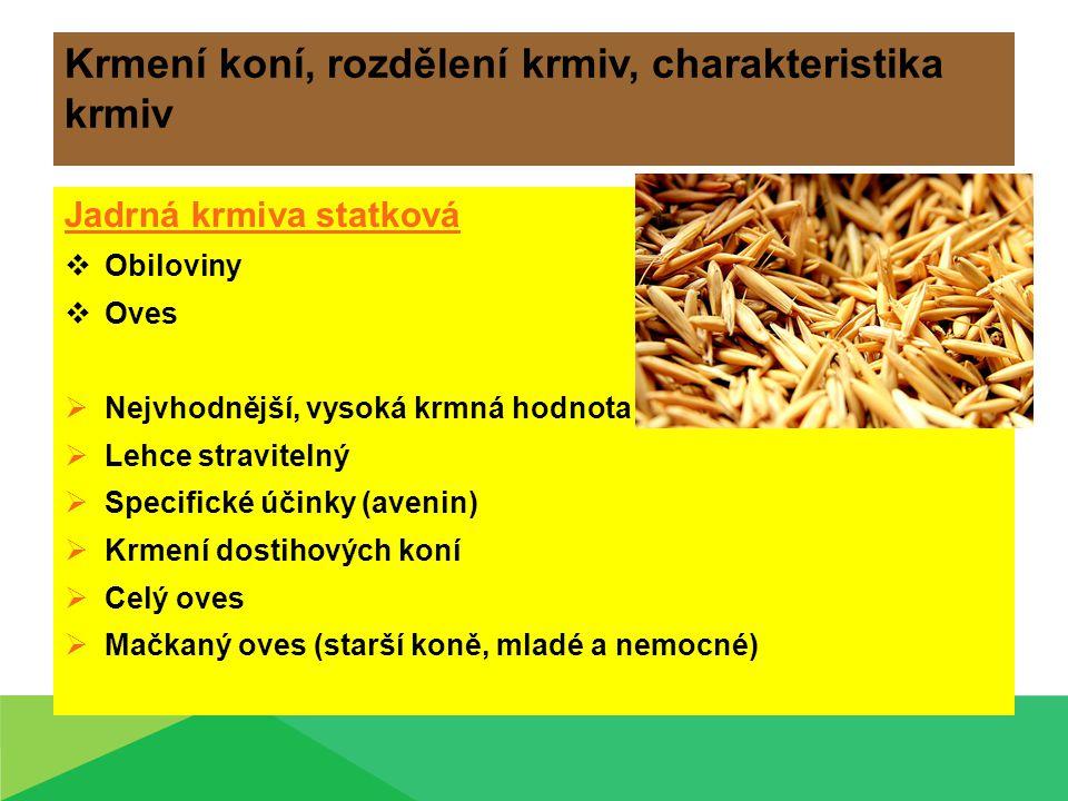 Krmení koní, rozdělení krmiv, charakteristika krmiv