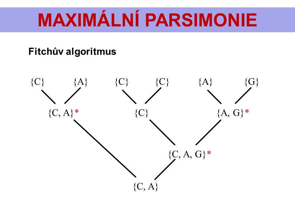 MAXIMÁLNÍ PARSIMONIE Fitchův algoritmus {C} {A} {C} {C} {A} {G}