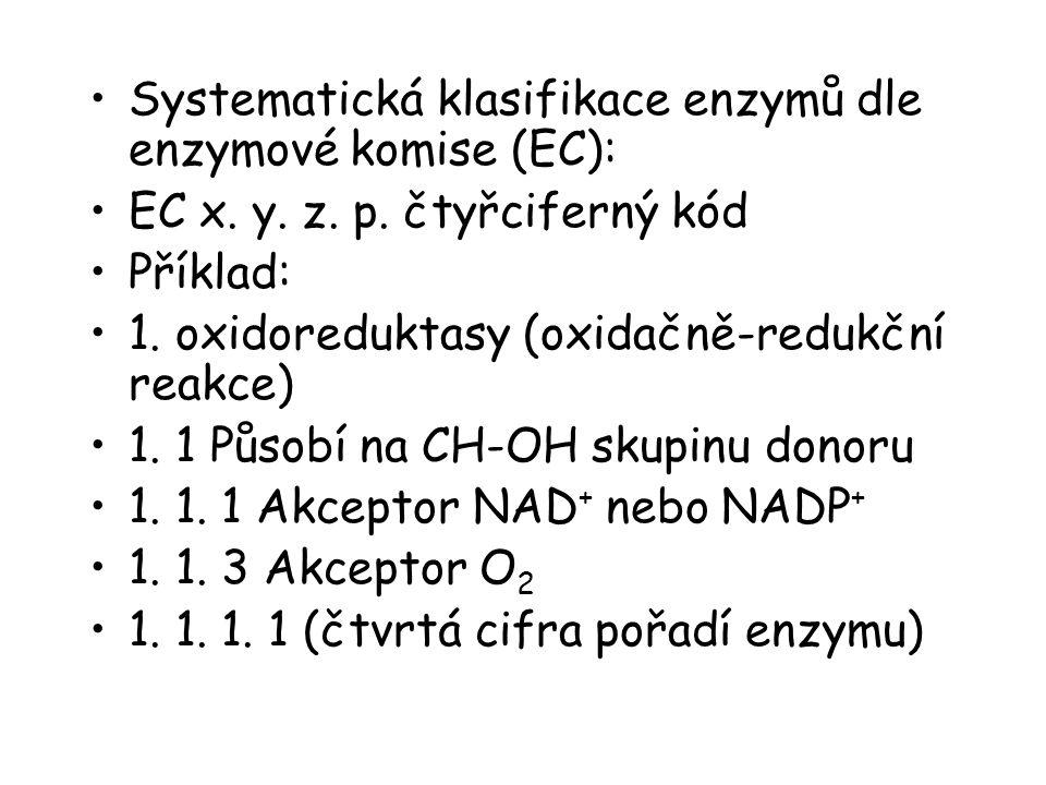 Systematická klasifikace enzymů dle enzymové komise (EC):