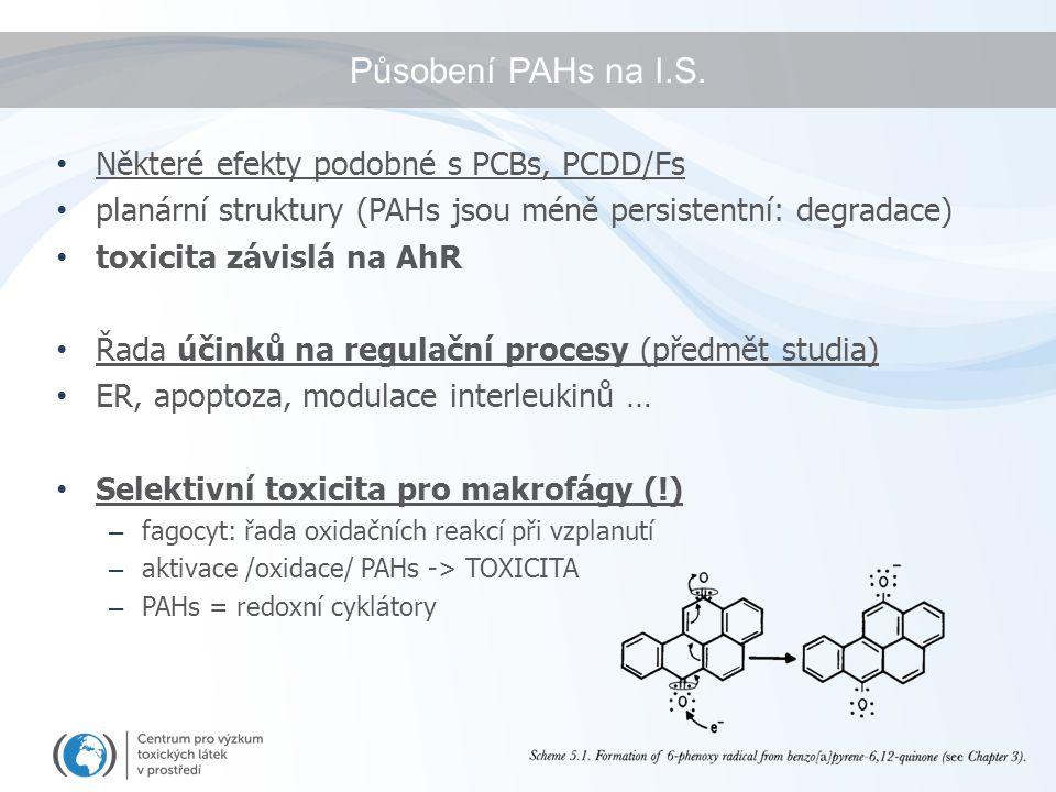 Působení PAHs na I.S. Některé efekty podobné s PCBs, PCDD/Fs