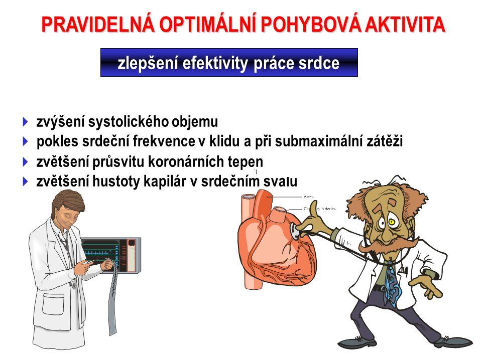 PRAVIDELNÁ OPTIMÁLNÍ POHYBOVÁ AKTIVITA zlepšení efektivity práce srdce