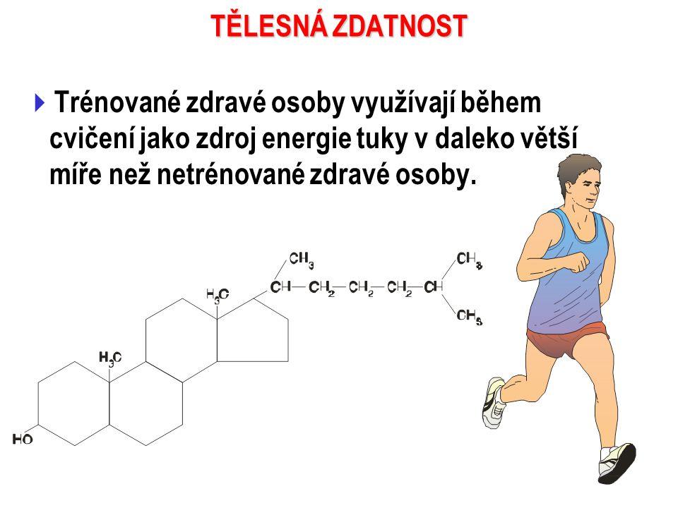 TĚLESNÁ ZDATNOST Trénované zdravé osoby využívají během cvičení jako zdroj energie tuky v daleko větší míře než netrénované zdravé osoby.