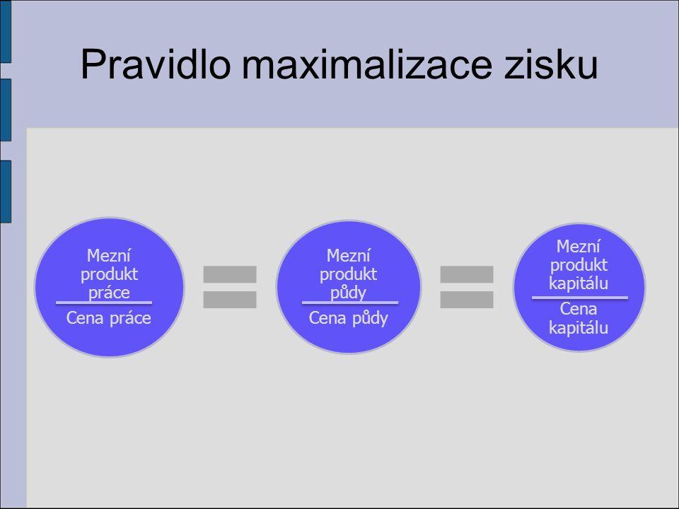 Pravidlo maximalizace zisku