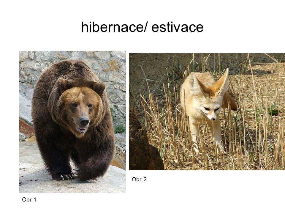 hibernace/ estivace Obr. 2 Obr. 1